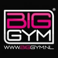 Big Gym